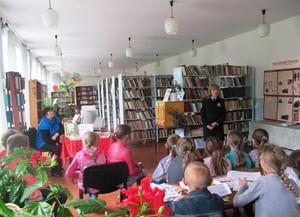 Костромская сельская библиотека