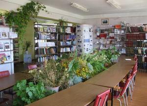 Буланихинская модельная библиотека