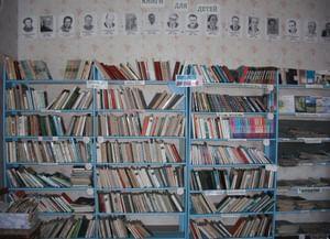 Луговская поселенческая библиотека