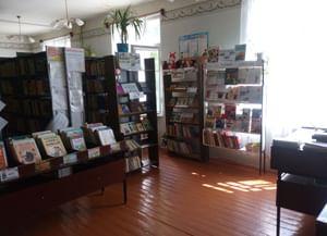 Александрийская сельская детская библиотека № 11