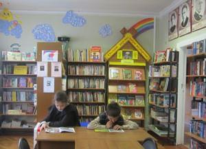 Биорковская сельская библиотека