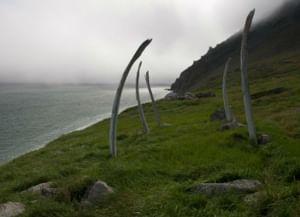 «Китовая аллея» (Сиклюк) в Чукотском автономном округе
