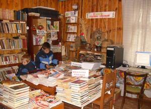 Аксёновская сельская библиотека-филиал № 4