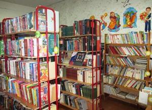 Шестаковская сельская библиотека
