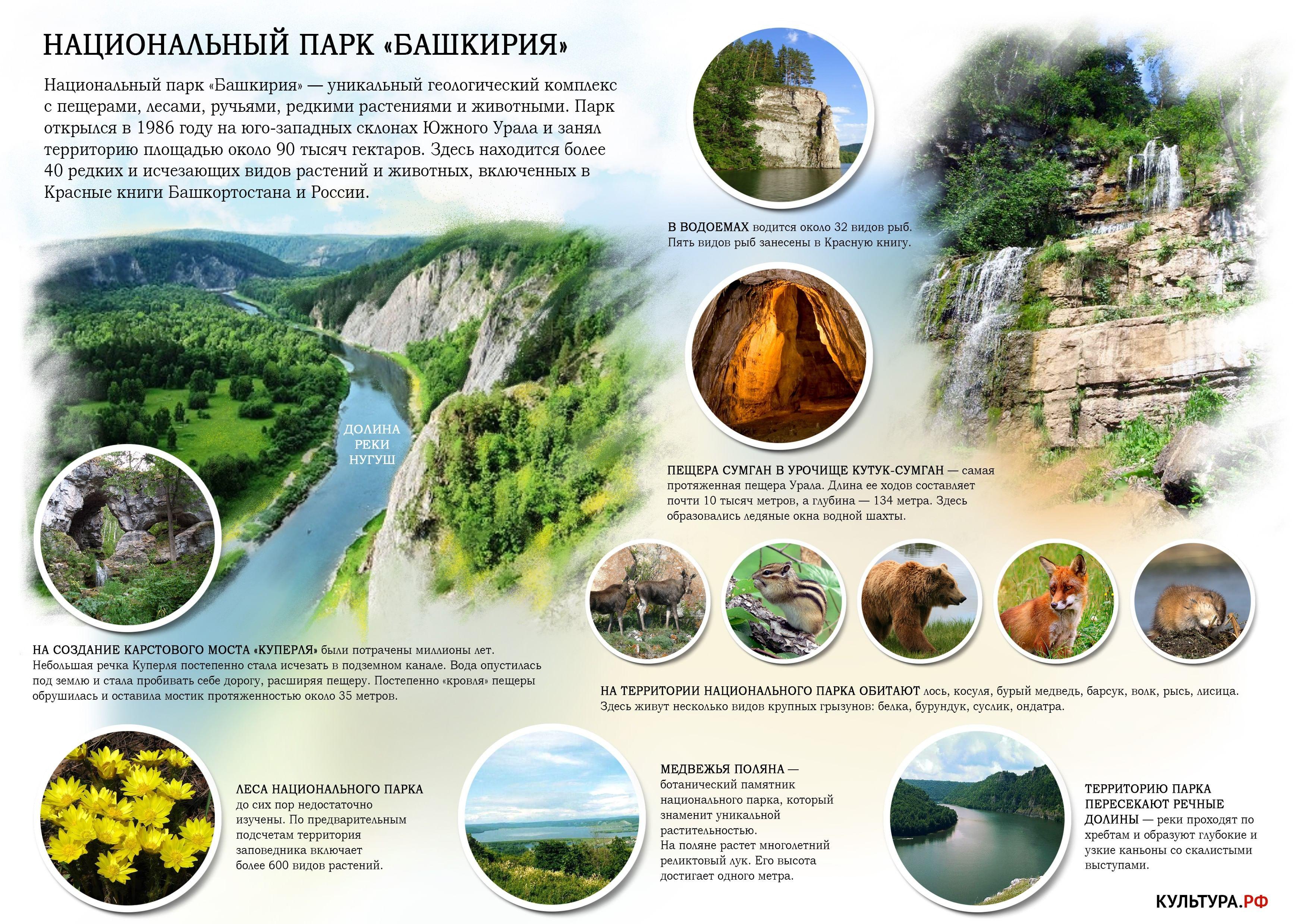 Национальные парки урала реферат 6096