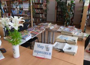 Высокская поселенческая библиотека