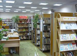 Детская районная библиотека Селивановского района