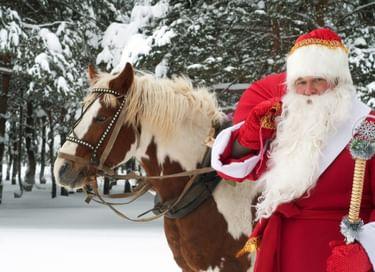 Открытие уличной елки «Дед Мороз собирает друзей»