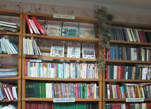 Пионерская сельская библиотека
