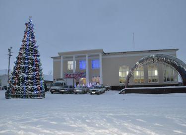 Открытие новогодней елки на центральной площади с. Богатое