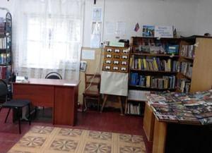 Добровская сельская библиотека-филиал № 2