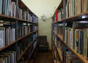 Лозовская сельская библиотека-филиал № 33