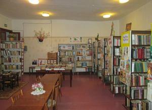 Каштановская сельская библиотека-филиал № 25