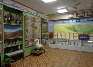 Постоянная экспозиция «Зал природы»