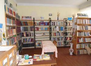 Колодезнянская сельская библиотека-филиал № 27