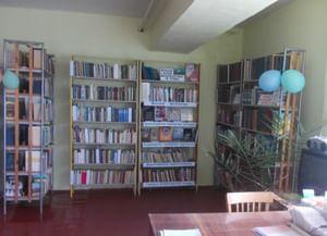 Новозбурьевская сельская библиотека-филиал № 49