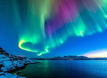 Выставка «Арктика – земля обитаемая»