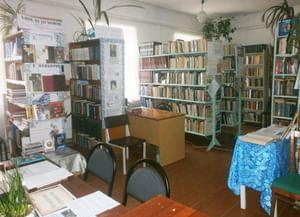 Скворцовская сельская библиотека-филиал № 13