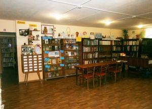 Родниковская сельская библиотека-филиал № 12