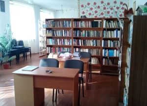 Раздольевская сельская библиотека-филиал № 50