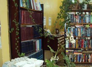 Вороновская сельская библиотека