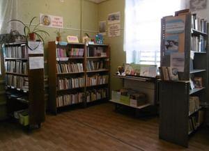 Волковская библиотека-сектор № 8