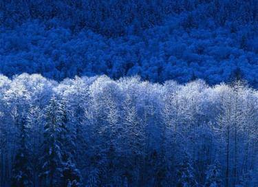 Музыкально-поэтический вечер «Зимние узоры»