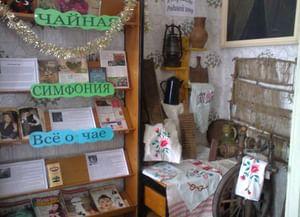 Нижнебыковская сельская библиотека