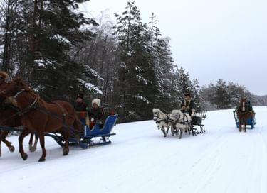 Программа «Катания в конном экипаже»