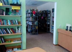 Нижнесуыксинская сельская библиотека