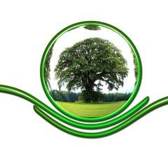 Выставка «Экология и жизнь»
