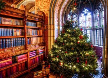 Библиоканикулы «Зима»