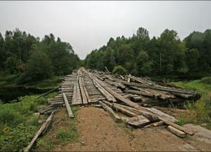 Особенности антропонимии у Вологодского сельского населения
