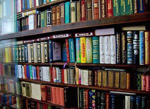 Шанинская поселенческая библиотека п. Участок № 12