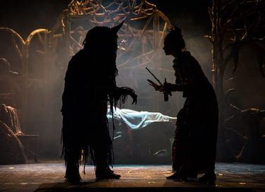 Спектакль «Красавица и Чудовище»