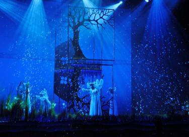 Спектакль «Майская ночь»