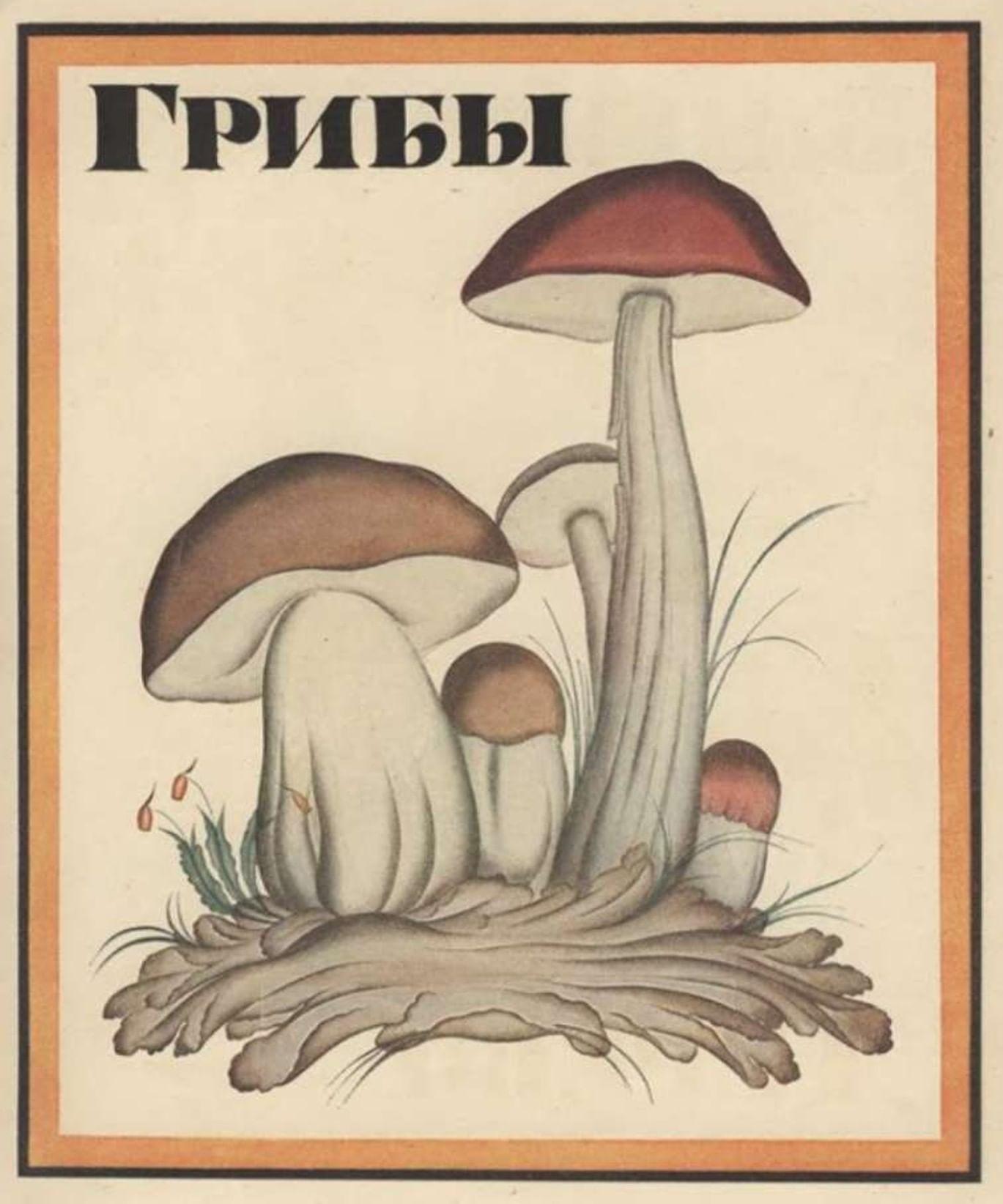 Букварь на службе ликбеза. Галерея 1. Владимир Конашевич