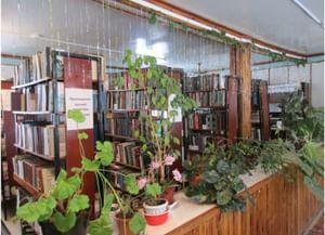 Сельская библиотека пос. «Рязанские сады»