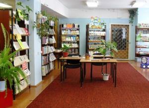 Шаготская сельская библиотека