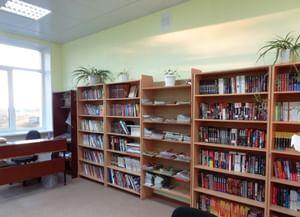 Дроновская сельская библиотека