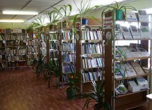Библиотека-филиал № 3 пос. Высокий