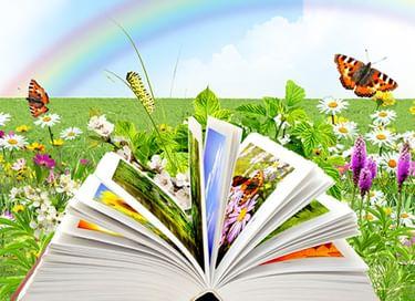 Межрегиональная акция «Читаем книги Нины Павловой»