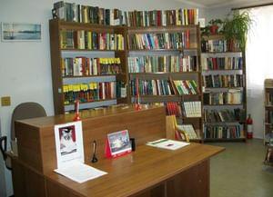Библиотека № 223