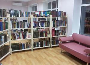 Библиотека № 217