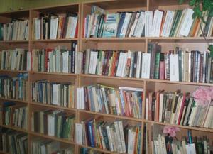 Арсаковская сельская библиотека