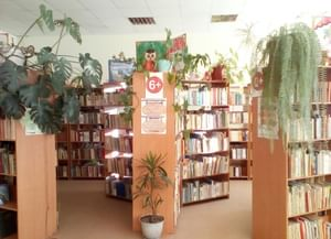 Детская библиотека Александро-Невского района