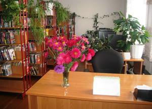 Новозаимская сельская библиотека