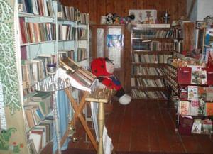 Бакинская сельская библиотека