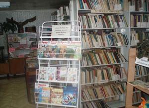 Мошнинская сельская библиотека