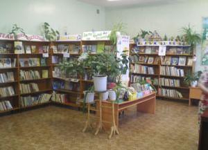 Трофимовская сельская библиотека